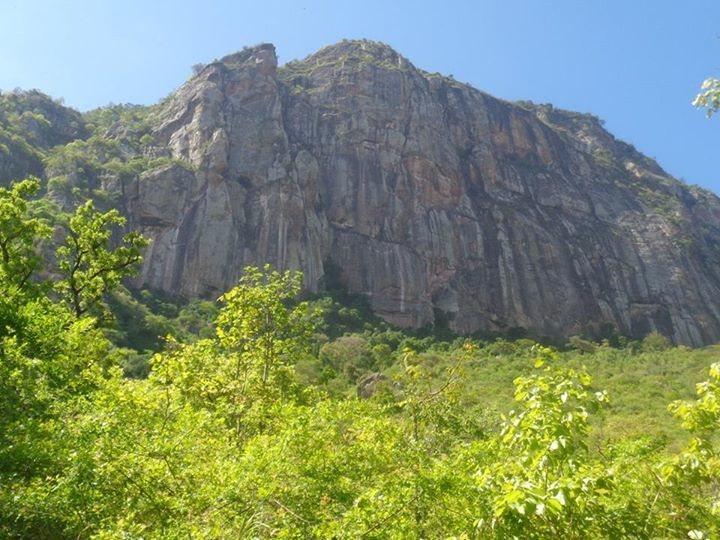 Cliff Face on Manyara Escarpment.