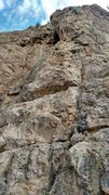 Rock Climbing Photo: Carrie at the anchors of Six Foot Harvey. A fun ro...