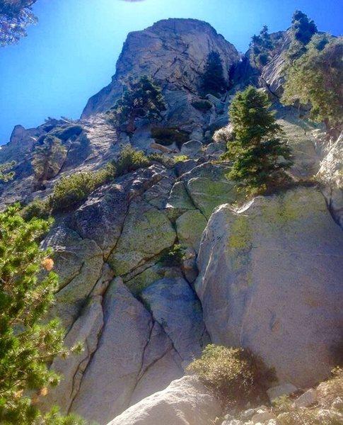 Rock Climbing Photo: Looking up at TIB from the base!