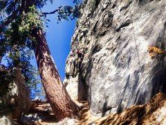 Rock Climbing Photo: Pops going for The Moon Dike!