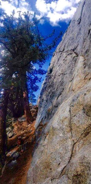 Rock Climbing Photo: West Face CRT!!!!