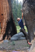Rock Climbing Photo: This boulder has a few fun problems on it. It's ju...