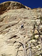 Rock Climbing Photo: Bout halfway on this nice long route
