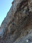 Rock Climbing Photo: more Priapus