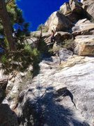 Rock Climbing Photo: Me on the FA of The Rotten Log Traverse!!!