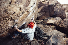 Rock Climbing Photo: Morning Dove White