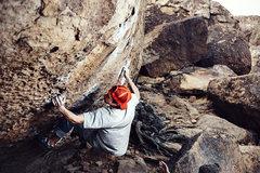 Rock Climbing Photo: Morning Dove White