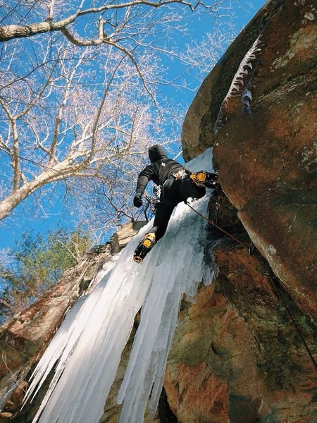 Rock Climbing Photo: Green Disease