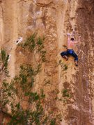Rock Climbing Photo: Mike Doyle on Necessary Evil