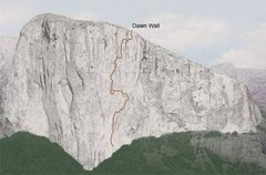 Rock Climbing Photo: Dawn Wall on El Capitan