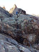 Rock Climbing Photo: Hamster Huey.