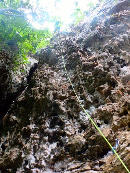 Rock Climbing Photo: Rope is on Aju
