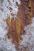 Rock Climbing Photo: January Ice Storm. Draws on Rainbow Wall.  © 2015...
