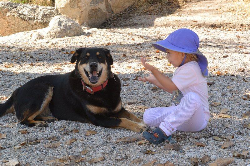 Rock Climbing Photo: Dog with child