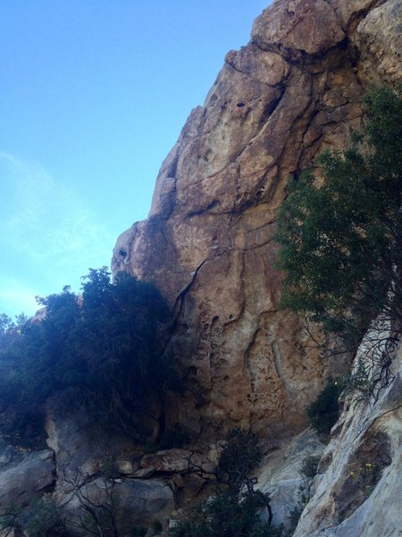 Rock Climbing Photo: Contender for tallest route in SB.