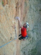 "Rock Climbing Photo: Federico Michielli on ""Barracuda"" - (7c+..."