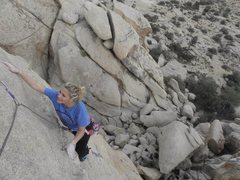 Rock Climbing Photo: Jtree- Wonderland