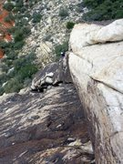 Rock Climbing Photo: Jamie coming up the P2 arete on Beulah's Book.  Ja...