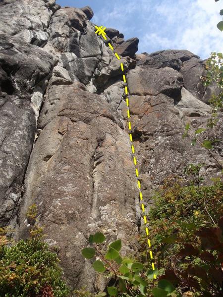 Rock Climbing Photo: Hand Jam!!!