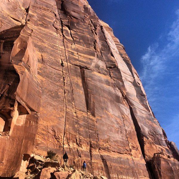 Rock Climbing Photo: splitter January day in Indian Creek