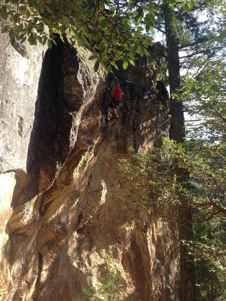 Rock Climbing Photo: Chainsaw.