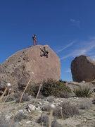 Rock Climbing Photo: The Professor. Photo: Nick Franco
