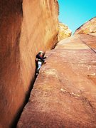 Rock Climbing Photo: Climbing Chrysler Crack in Red Rock.