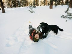 Rock Climbing Photo: Mount Charleston Snow Days with my dog Chaco