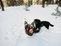 Rock Climbing Photo: Mount Charleston Snow Days with my dog Chaco