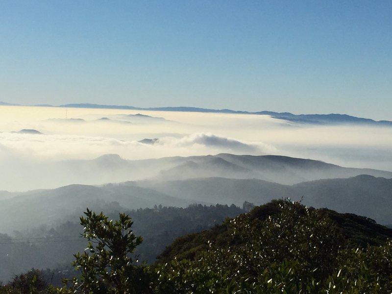 SF below Mt Tam.