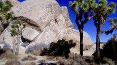 Rock Climbing Photo: CAFS!!!
