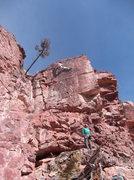 Rock Climbing Photo: Tony leading Platte River Bust 1/25/2015