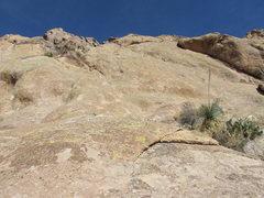Rock Climbing Photo: Jim Graham on Toucan Bob.