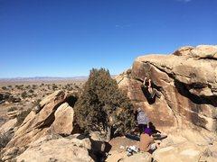 Rock Climbing Photo: Hopper area