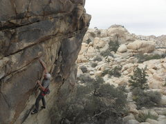 Rock Climbing Photo: R.R. on Ghouls...