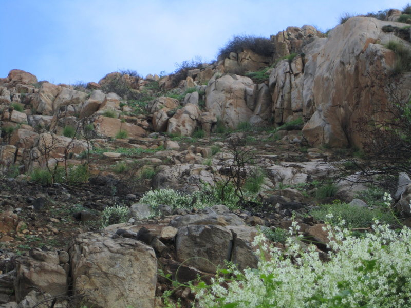 Rock Climbing Photo: Limbo post burn