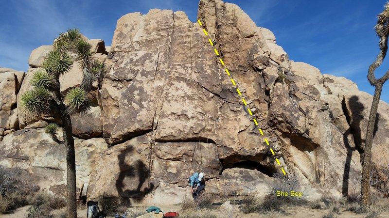 Rock Climbing Photo: Southwest face of Pet Rock, Joshua Tree, CA.