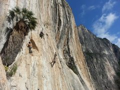 Rock Climbing Photo: Outrage Wall. Potrero Chico, Mexico.