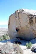Rock Climbing Photo: The Checkerboard - V8