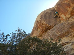 Rock Climbing Photo: Allison working through the firm but fair signatur...