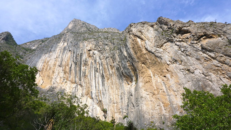 Rock Climbing Photo: Outrageous