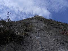 Rock Climbing Photo: Yankee Clipper