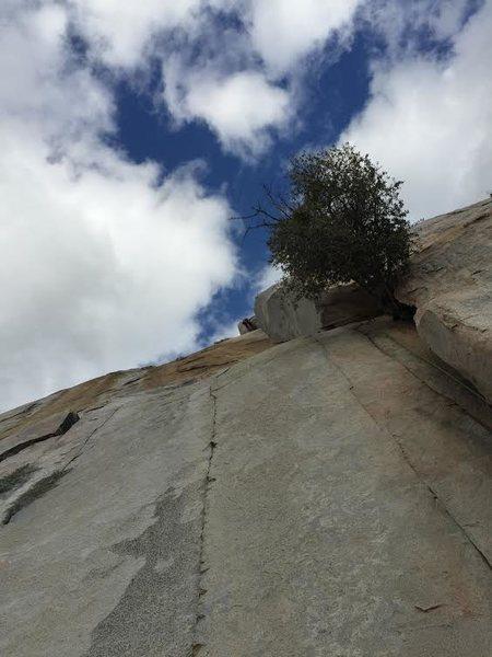 Rock Climbing Photo: Leading the lieback crack