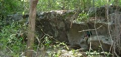Rock Climbing Photo: The great wall, this area is completely grown up n...