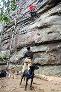 Rock Climbing Photo: Rocky: The World's Worst Crag Dog stands guard ove...