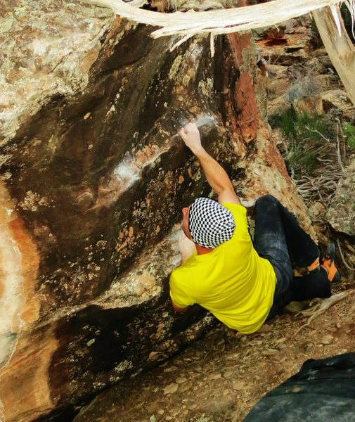 Rock Climbing Photo: Sticking the first move of Global Charming.