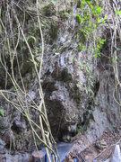 Rock Climbing Photo: Camp boulder