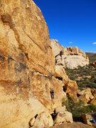Rock Climbing Photo: Solo Dog