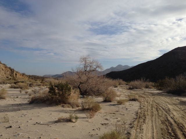 Upper Coyote Canyon, Anza Borrego State Park