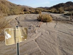 Rock Climbing Photo: End of the road at Upper Willows, Anza Borrego Sta...